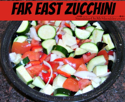 Far East Zucchini in a solar oven