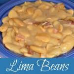 Lima Beans Solar Style