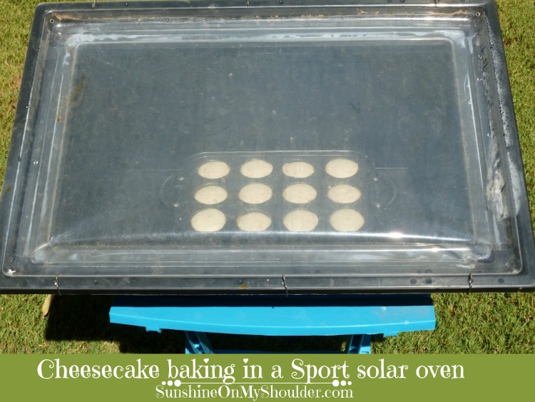 cheesecake_in_solar_oven