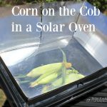 Solar Cooked Corn on the Cob