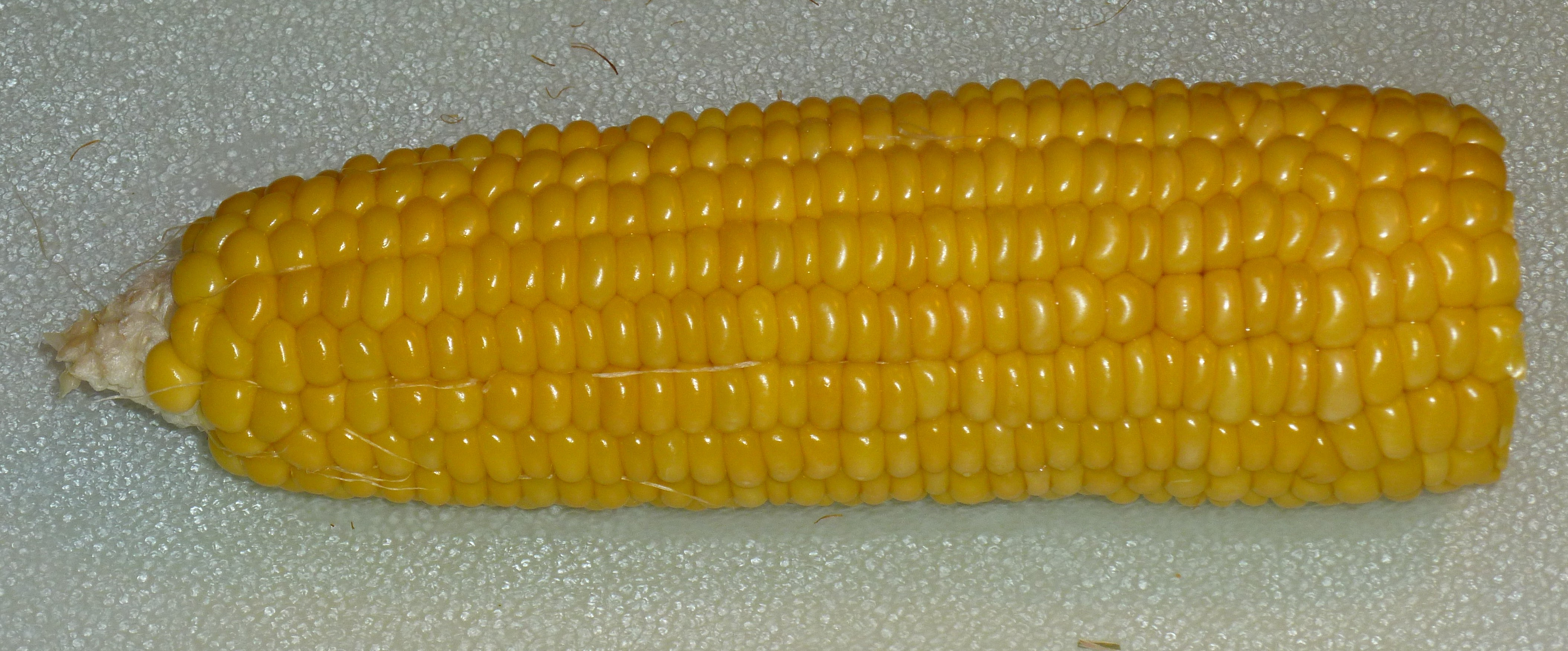 How To Cook Corn On The Cob | PkHowto
