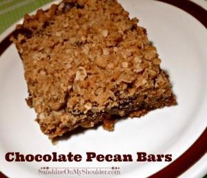 Chocolate Pecan Bar Solar oven Dessert Recipes