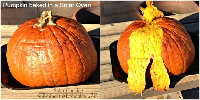 Whole baked pumpkin in a solar oven.