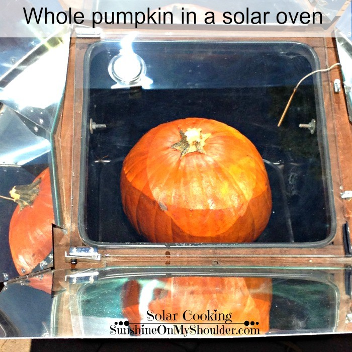 whole_pumpkin
