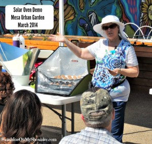 image of solar cooking demo