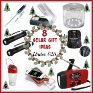 8 Solar Gift Ideas under $25