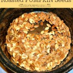 Roasted Pumpkin Seeds in a solar oven