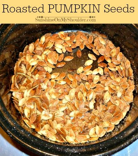 Roasted Pumpkin Seeds |Sunshine On My Shoulder