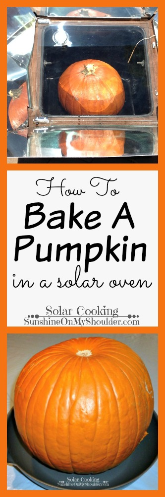 Baked Pumpkin in a solar oven, solar cooking