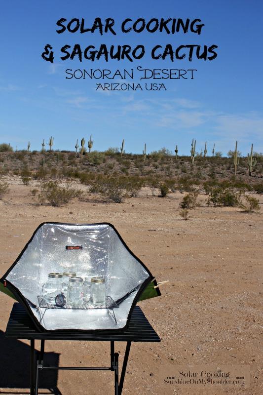 Solar cooking in the Sonoran Desert Arizona
