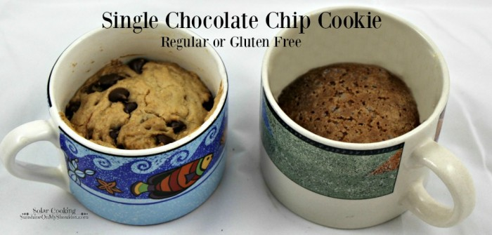 Single Chocolate Chip Cookie solar cooking recipe
