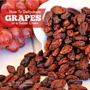 How to Dehydrate Grapes in a Solar Oven