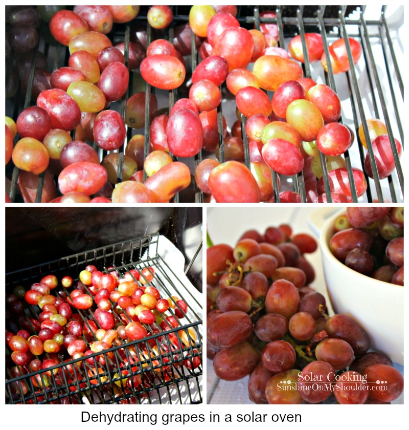 How To Dehydrate Grapes in a Solar Oven, solar cooking