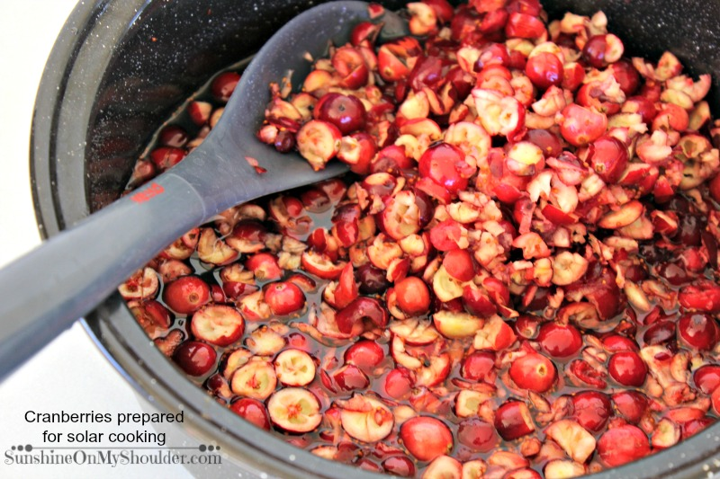 Homemade Cranberry Sauce being prepared to cook in a solar oven
