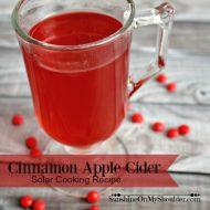 Cinnamon Apple Cider Recipe for Solar Cooking