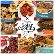 8 Favorite Solar Cooking Recipes from 2017