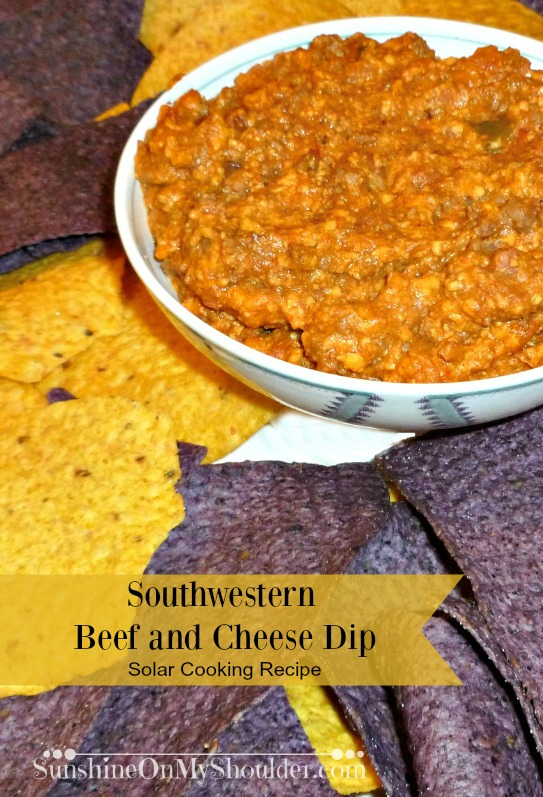 Southwestern Beef And Cheese Dip